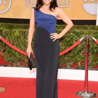 HIGHLIGHTS from the red carpet at 20th annual SAG awards