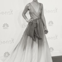 CELEBS at the 66th emmy awards