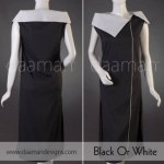 Daaman Fall Season Dresses 2013 For Women (1)