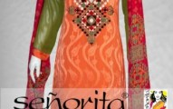 Senorita Casual Dresses 2013-2014 Winter Collection for women (2)