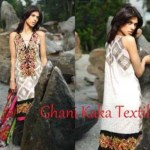 Ghani Kaka Textile Embroidery Work Winter Dresses For Women (2)