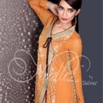 Needlez by Shalimar Winter Collection 2013-14 For Women (7)