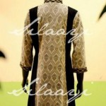 Silaayi Winter Dress Collection 2013 For Women (5)