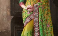 Kaneesha Indian Girls Latest Sarees Collection 2013 (4)