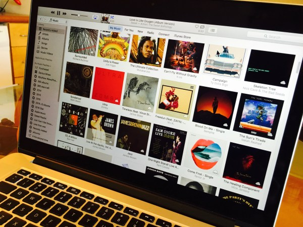 Screen shot of iTunes library on MacBook pro