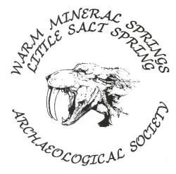 wmslssas-logo