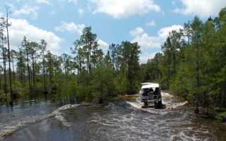 On the Loxahatchee River