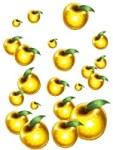 黄金の果実