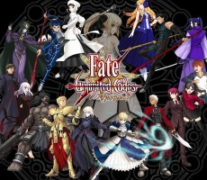 Fate_unlimited_codes