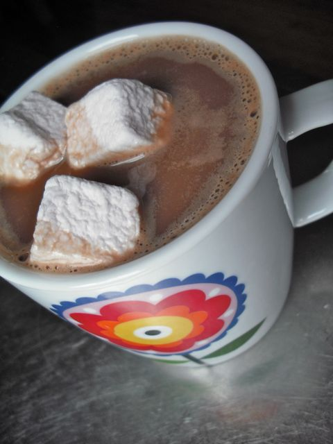 http://i2.wp.com/fatgayvegan.com/wp-content/uploads/2011/04/hot-chocolate.jpg?fit=480%2C640