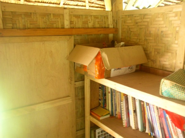 We let the hens lay their eggs inside the house, resulting in mites problem at home and hens insisting to go in the house. Here is one of the hens in a box on top of the bookshelf.