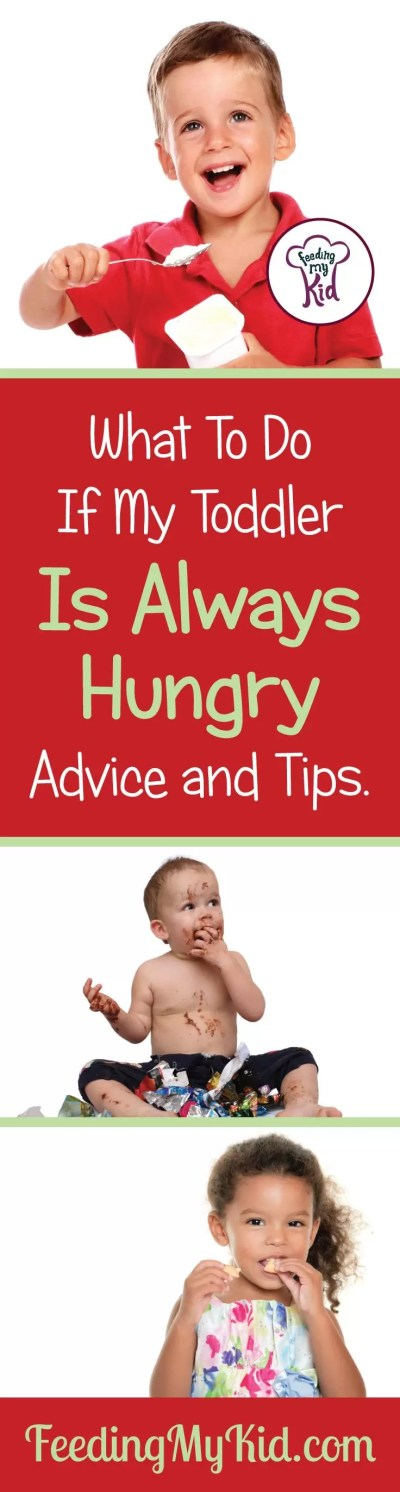 Overeating: What To Do If My Toddler Is Always Hungry. Advice And Tips.
