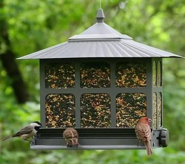Image result for backyard bird feeder ideas