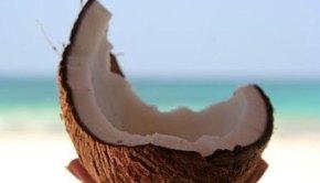 CoconutbyGret@Lorenz_e_una_combattente!
