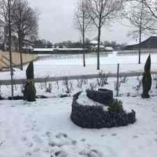 Winterstimmung Feigengarten