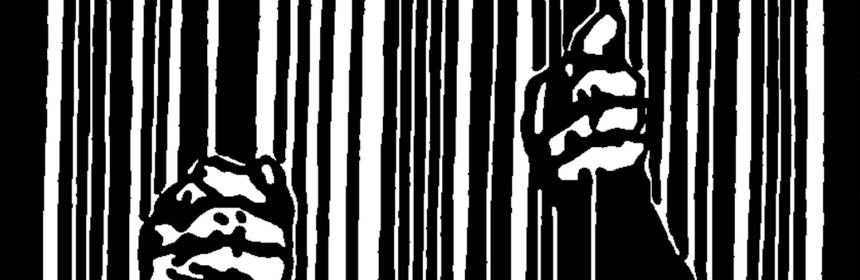 criminology - prisons are a feminist issue (2)