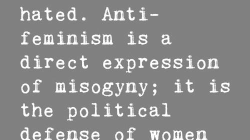 feminism is hated, anti-feminism