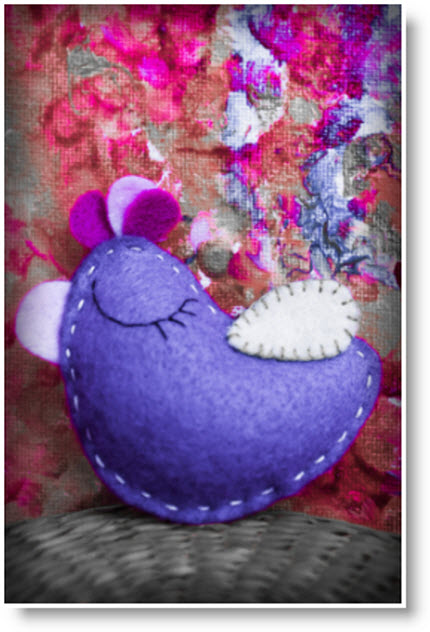 Little pruple bird