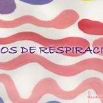 tipos_respiracion