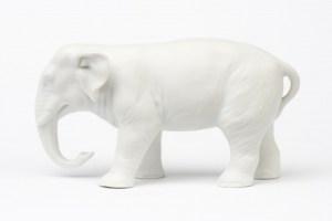 elefante_blanco