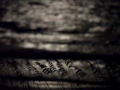 Čuvar stada XIX – Zašto li mesečina travu obasjava? [Tema: Pesoa]