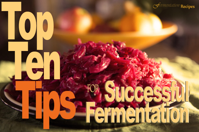 Top 10 Tips for Successful Fermentation