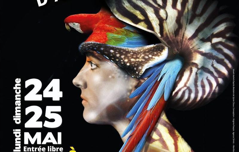 Festiv'Arts 2015, à Plumes et à Poils