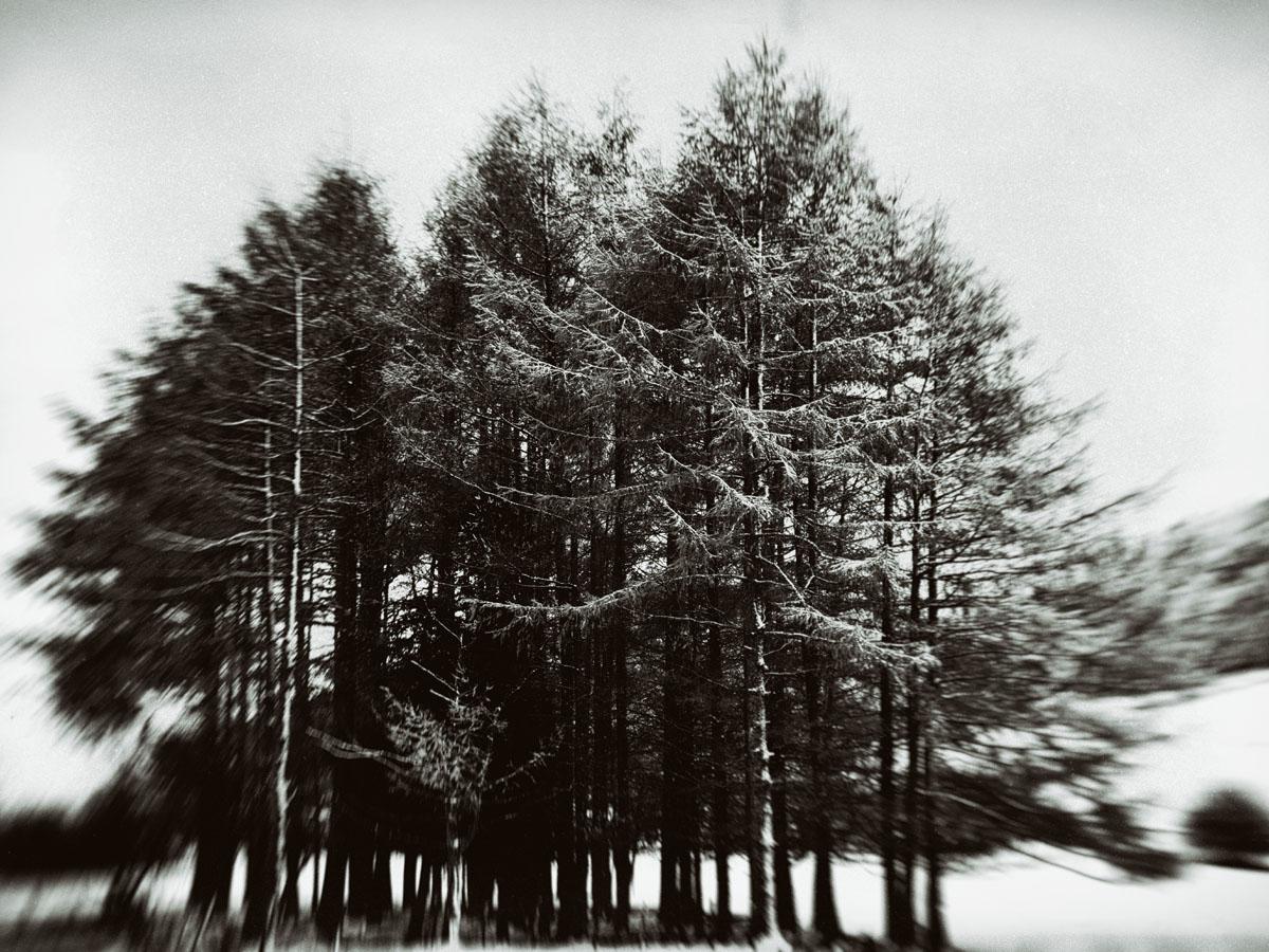 Ferrière Laurent-Face à l'hiver, photo, 30x40cm,2015-web