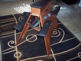 chestnut and mahogany horse 020