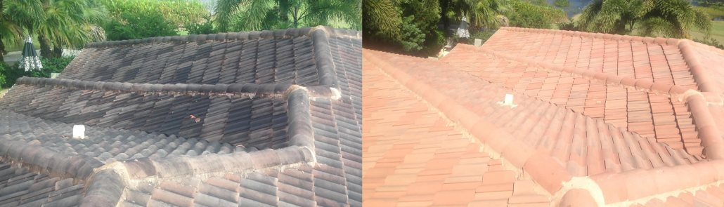 Coral Springs Roof Cleaning – Be Smart and Choose Fiddler!