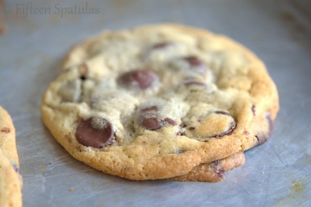 Aged Chocolate Chip Cookies