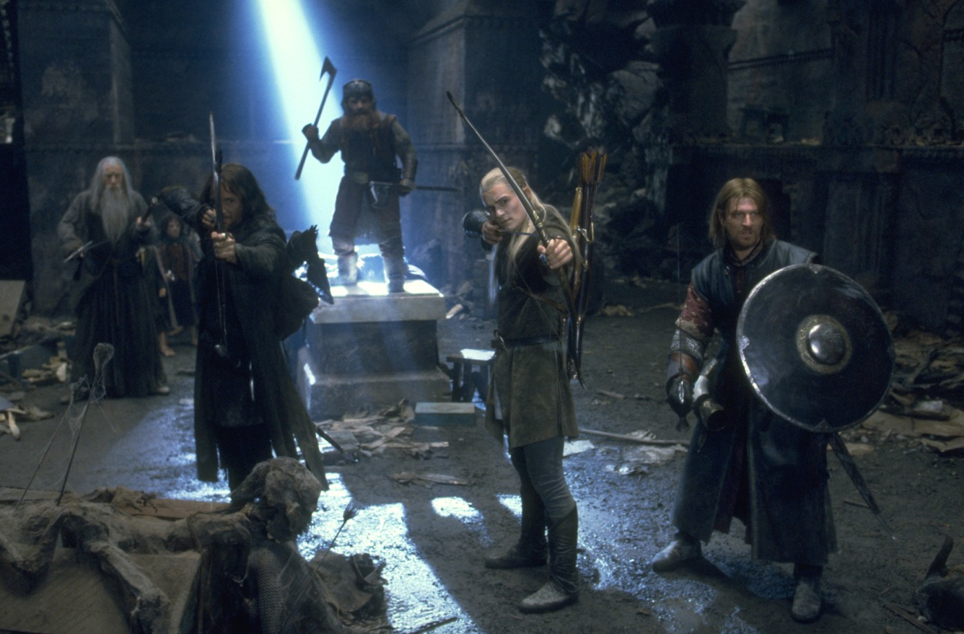 the-lord-of-the-rings-the-fellowship-of-the-ring-155355l