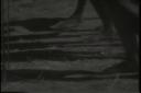 Trader Horn Footage2