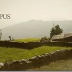 highway-to-dhumpus-poster-1.jpg