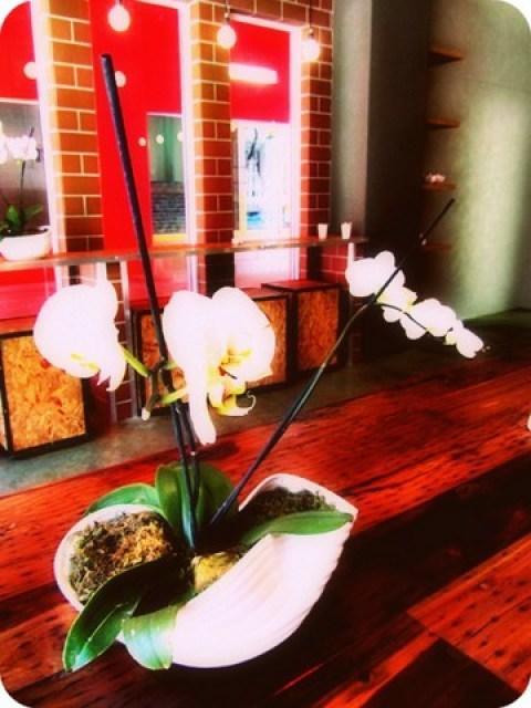 Flowers at Ramen