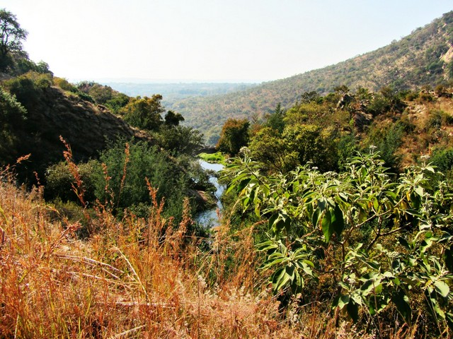 Walter Sisulu Botanical Gardens view of the river