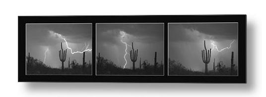 Southwest Saguaro Cactus Desert Storm Panorama Bw Metal Art Print
