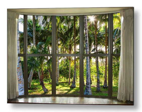 Tropical Jungle Reflections Bay Window View Metal Print