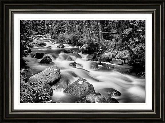 Cascading Rocky Mountain Forest Creek Bw