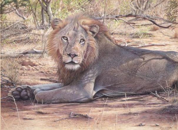 eric-wilson-lion-pastel