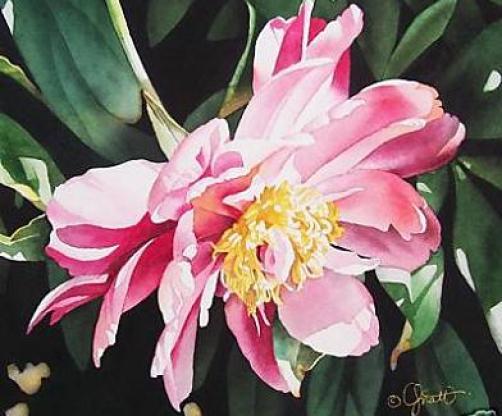 watercolor-flower