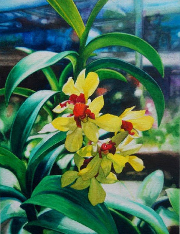floral-watercolor-paintings