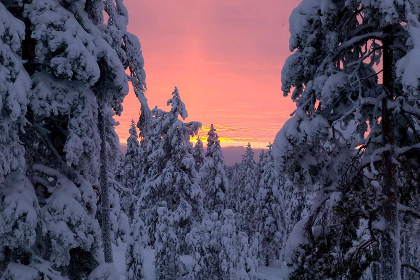 寒くて暗いフィンランドの冬