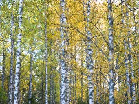 Sibelius-Karelia-Suite