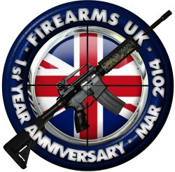 Official 1st Anniversary logo