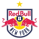 New York Red Bulls Logo- Yellow Star