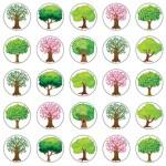 עצים קטנים