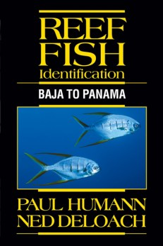 Reef Fish Identification Baja to Panama