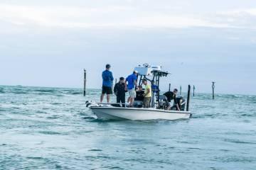 takemediafishing3
