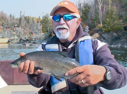 Angelo holds a gorgeous Whitefish which the boys consider is Ontario's version of the famed Bonefish.